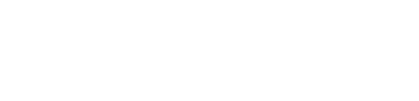 2017 NSW Training Awards State Finalist